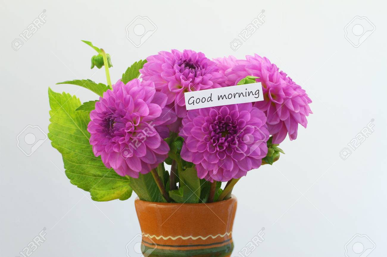 Good morning card with pink dahlia bouquet in clay flower vase stock good morning card with pink dahlia bouquet in clay flower vase stock photo 74090767 izmirmasajfo Images