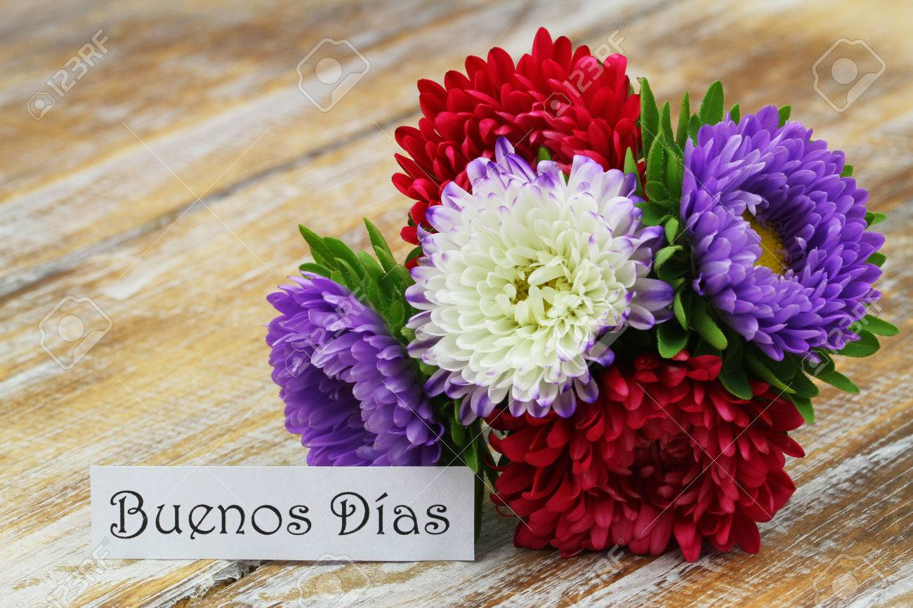 Buenos dias good morning in spanish with colorful aster flower buenos dias good morning in spanish with colorful aster flower bouquet stock photo izmirmasajfo