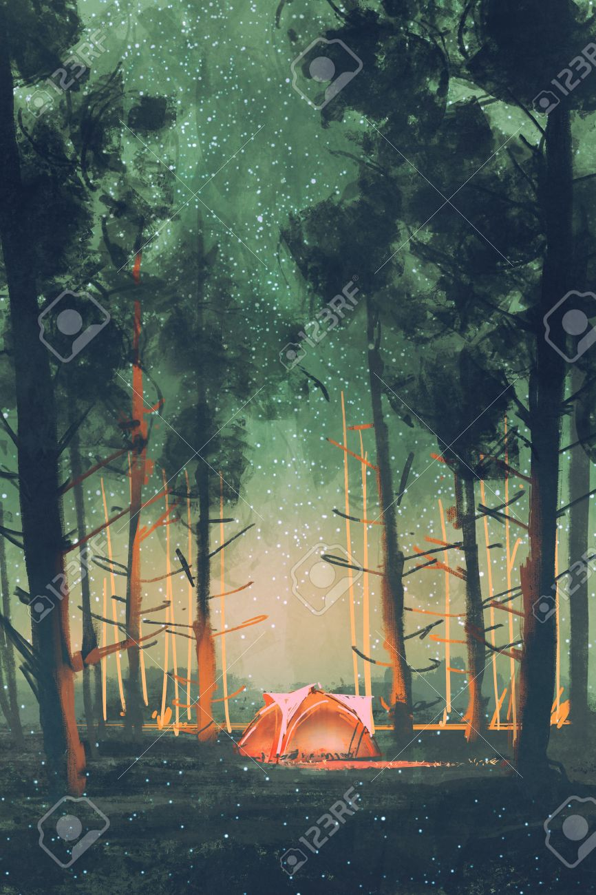 camping in forest at night with stars and fireflies,illustration,digital painting Stock Illustration - 60509330