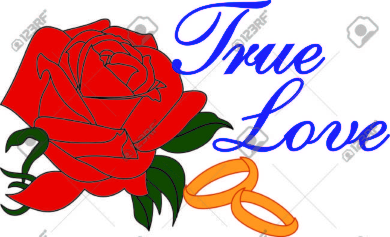 One Of The Most Universal Of All Symbols The Red Rose Represents