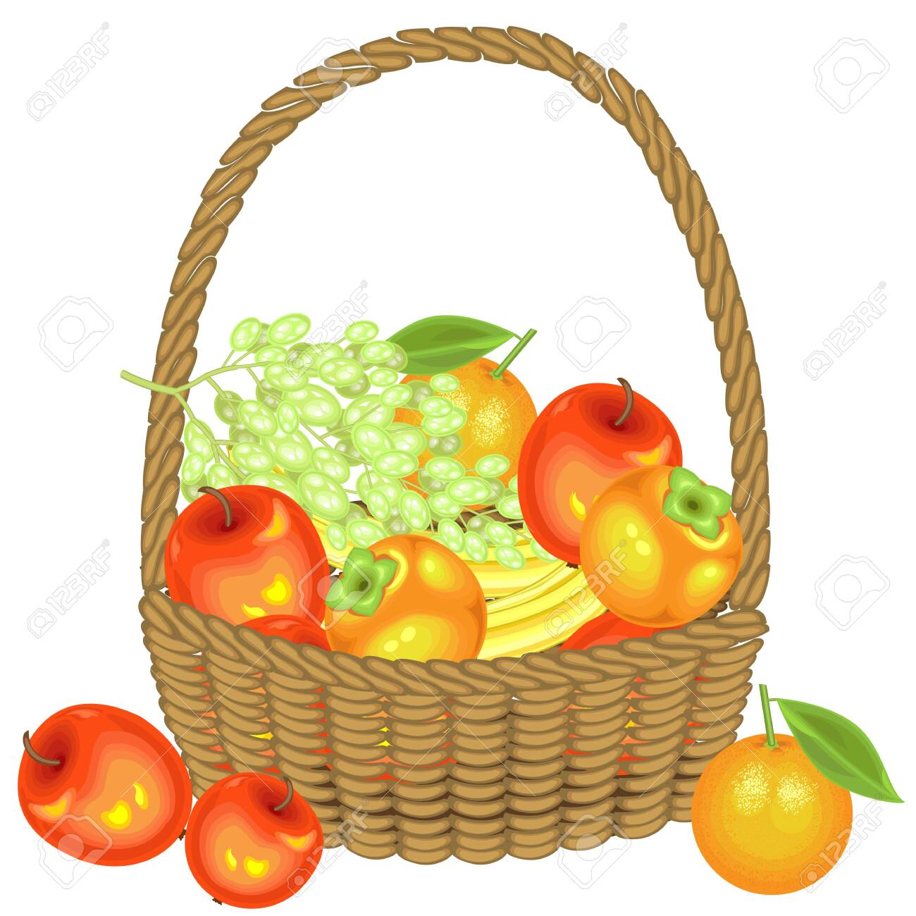 Collected a generous harvest. In the basket are apples, bananas, grapes, persimmons and oranges. Fresh beautiful fruit. Vector illustration. - 122018407
