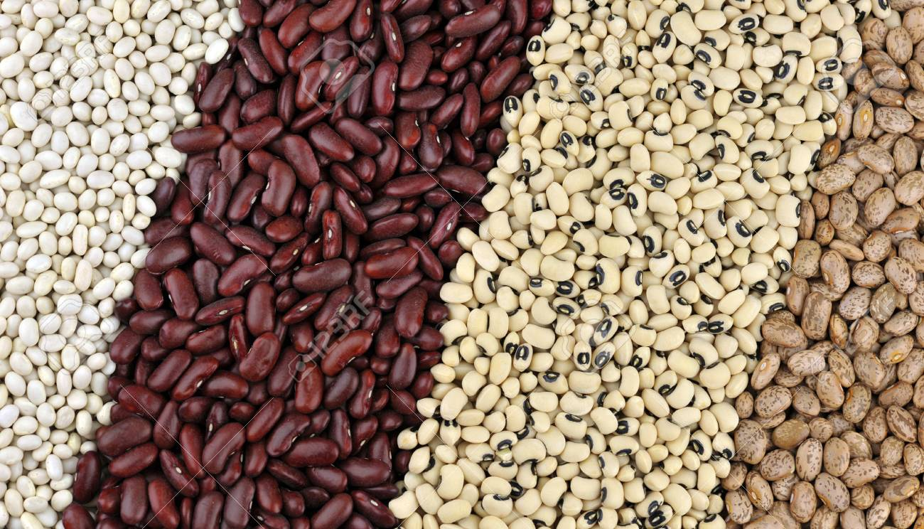 Dried Beans From Left Haricot Or Navy Beans Red Kidney Beans Stock Photo Picture And Royalty Free Image Image 70469290