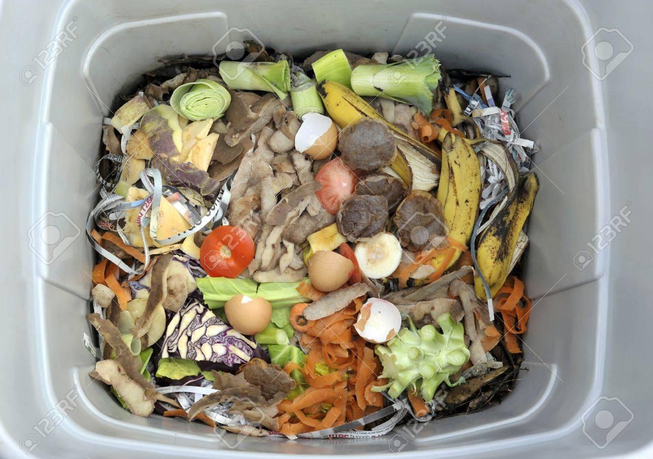 야채, 과일, 일반 주방 음식물 쓰레기, 신문지 조각이있는 음식물 쓰레기통 안에. 로열티 무료 사진, 그림, 이미지 그리고  스톡포토그래피. Image 71620374.