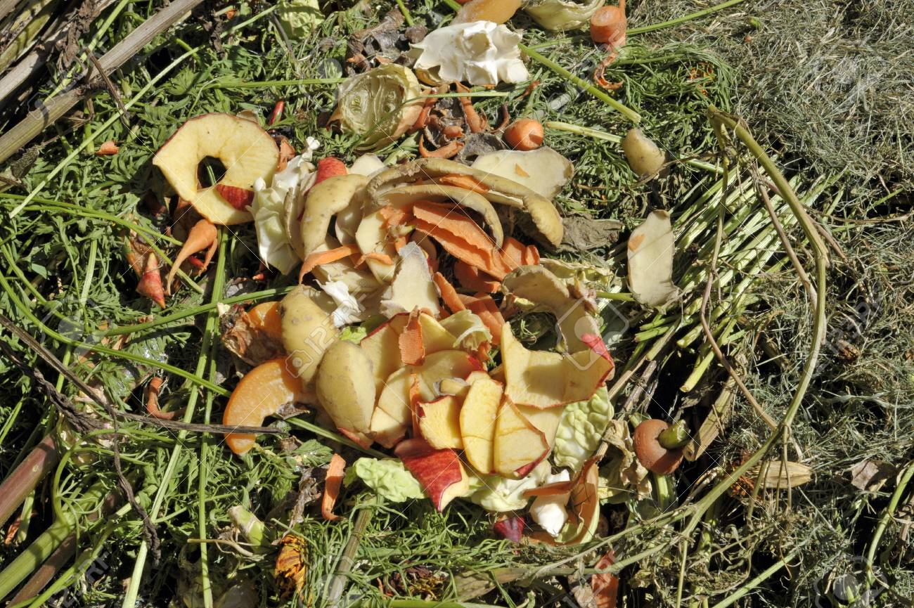Recycling Garden And Kitchen Waste On A Compost Heap Including ...