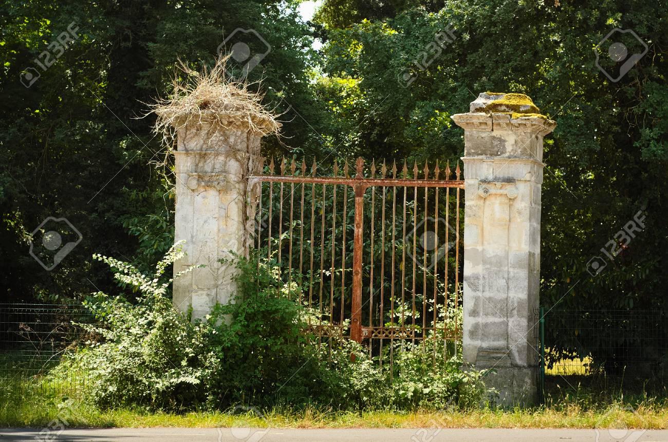 Vieux Portail En Bois vieux portail rouillé couvert de buissons.