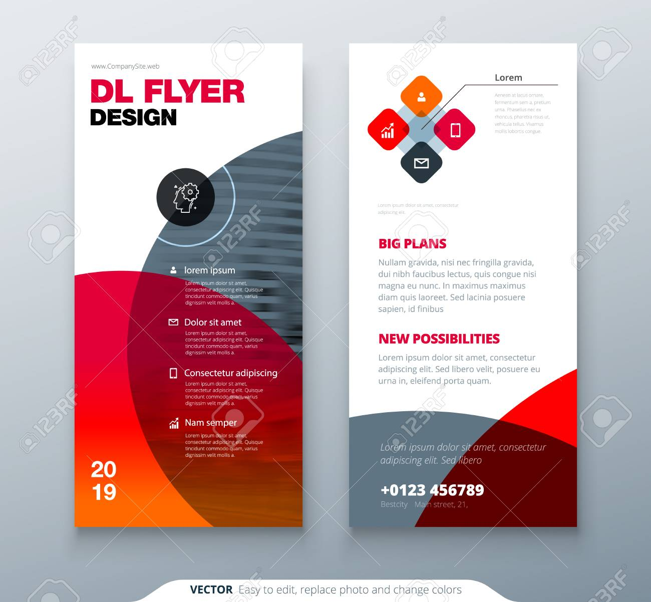 DL Flyer Design. Red Business Template For Dl Flyer. Layout With ...