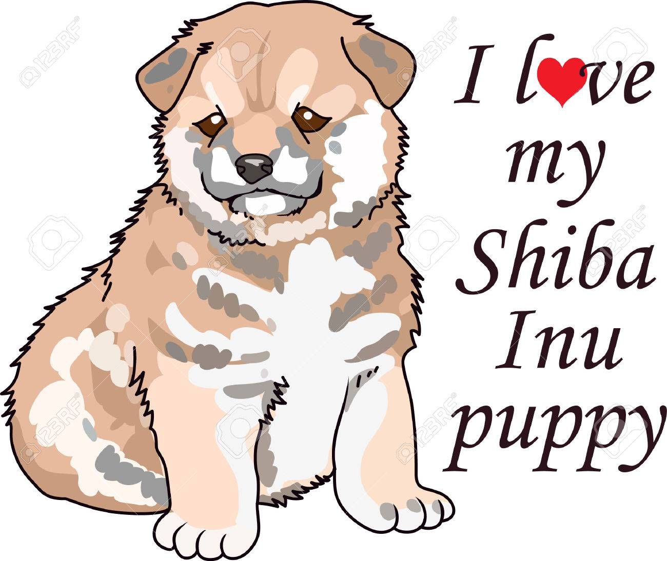 Take your Shiba Inu everywhere you go. - 45173585