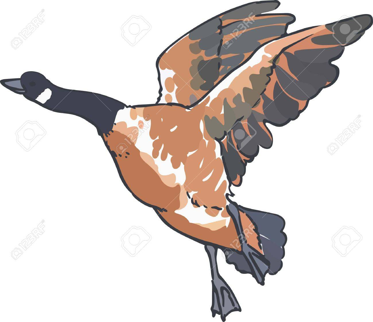 A goose is a classic symbol for canada royalty free cliparts a goose is a classic symbol for canada stock vector 45352179 biocorpaavc