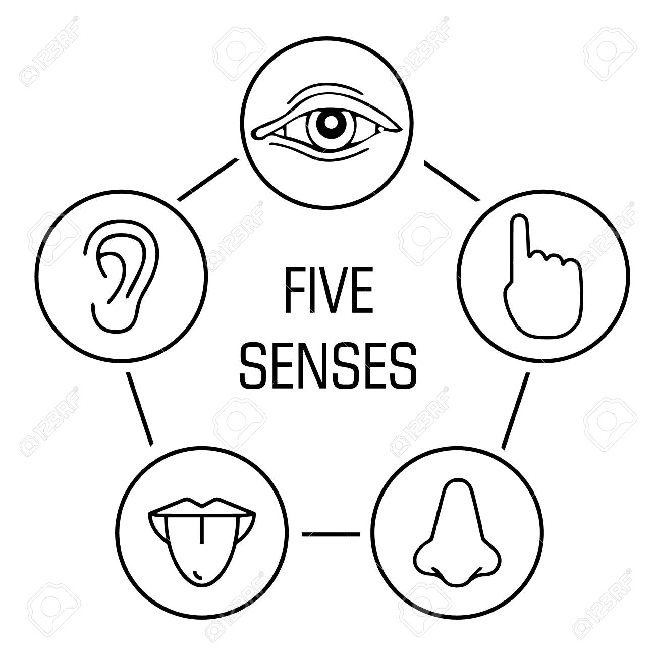 set of five human senses. Vision, hearing, touch, taste, smell icon - 97228253