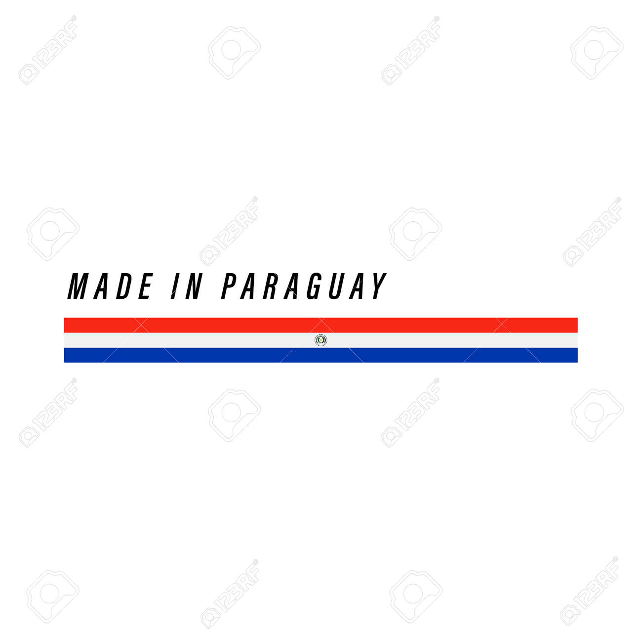 Made in Paraguay, badge or label with flag isolated on white background - 168929111
