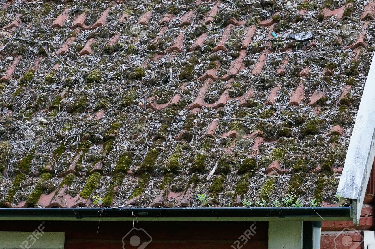 Clay Tiles On Roof Top Neding Maintenance Replacement Or Cleaning - Clay tile roof maintenance