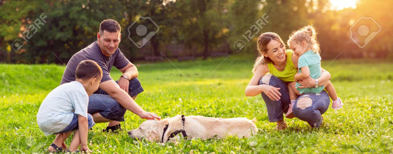 happy family is having fun with golden retriever - Happy family playing with dog in park - 105074219