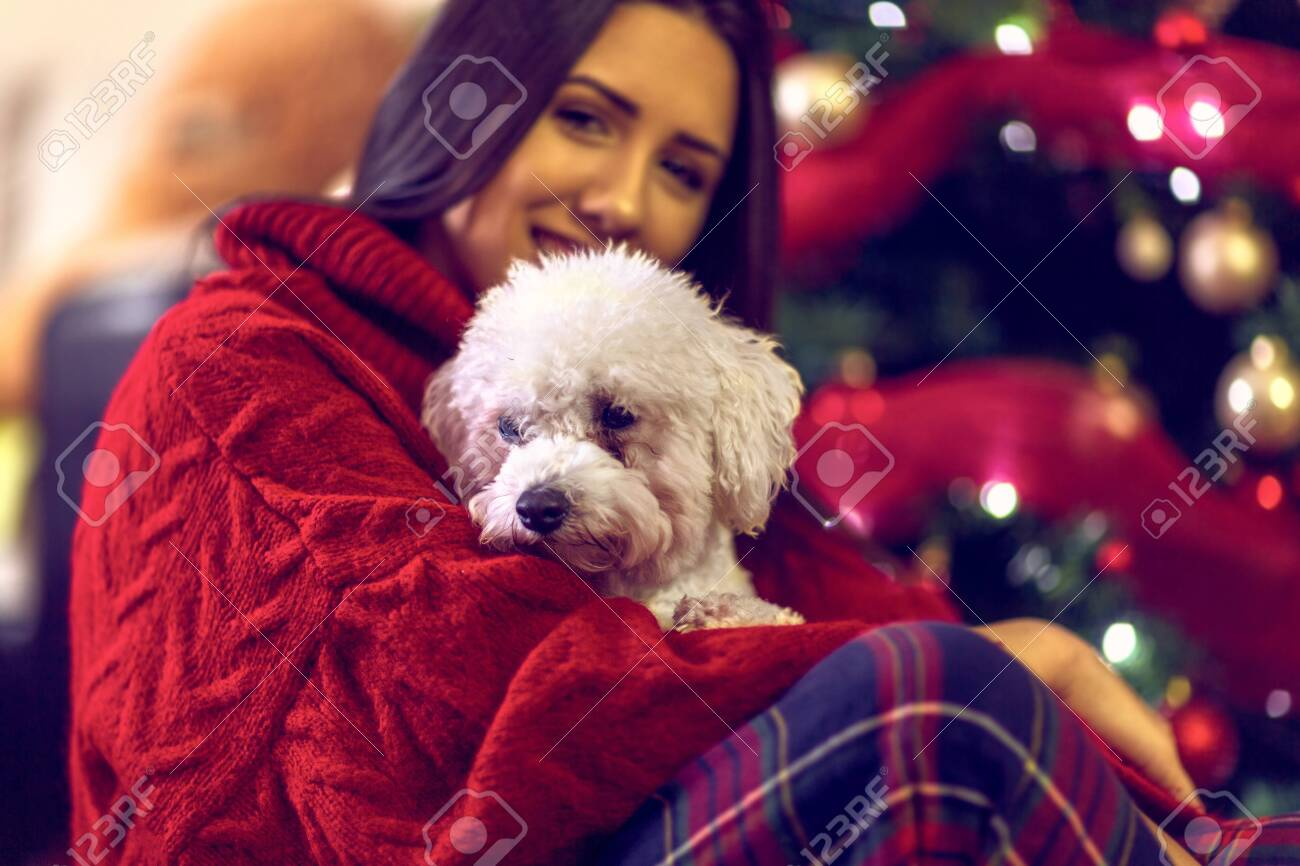 cute dog for Christmas gift.Smiling girl embracing cute dog. - 134962271