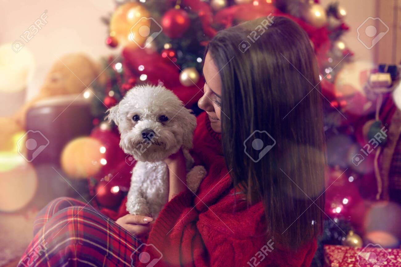 smiling young woman embracing cute dog at Christmas holiday - 134962668