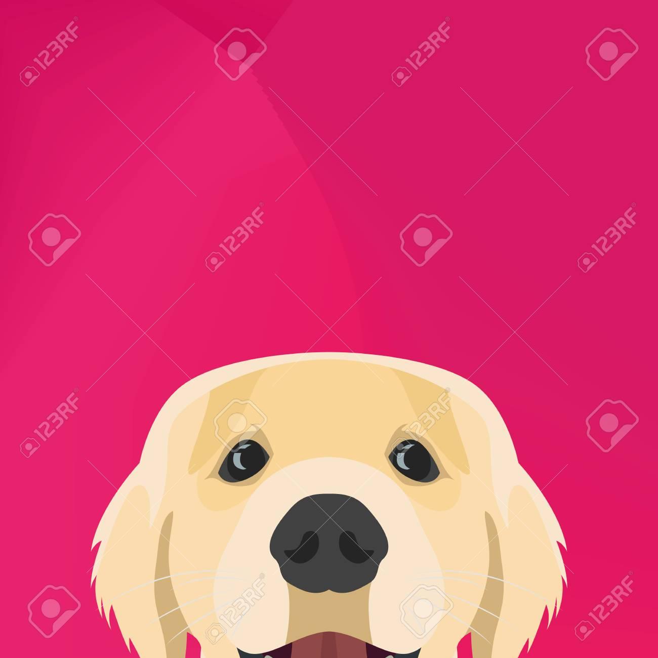 イラスト犬のゴールデンレトリバーのグラフィック デザインの創造的な