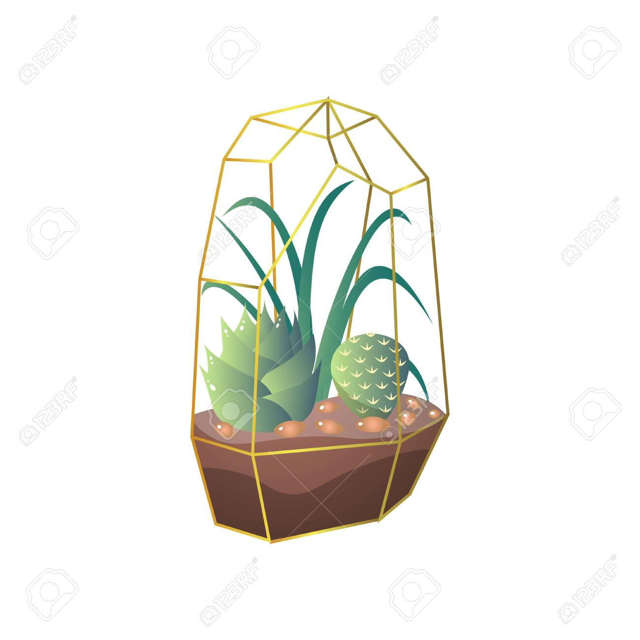 Green Succulent And Cactus Plant In Terrarium Ground Pot For Royalty Free Cliparts Vectors And Stock Illustration Image 123839663