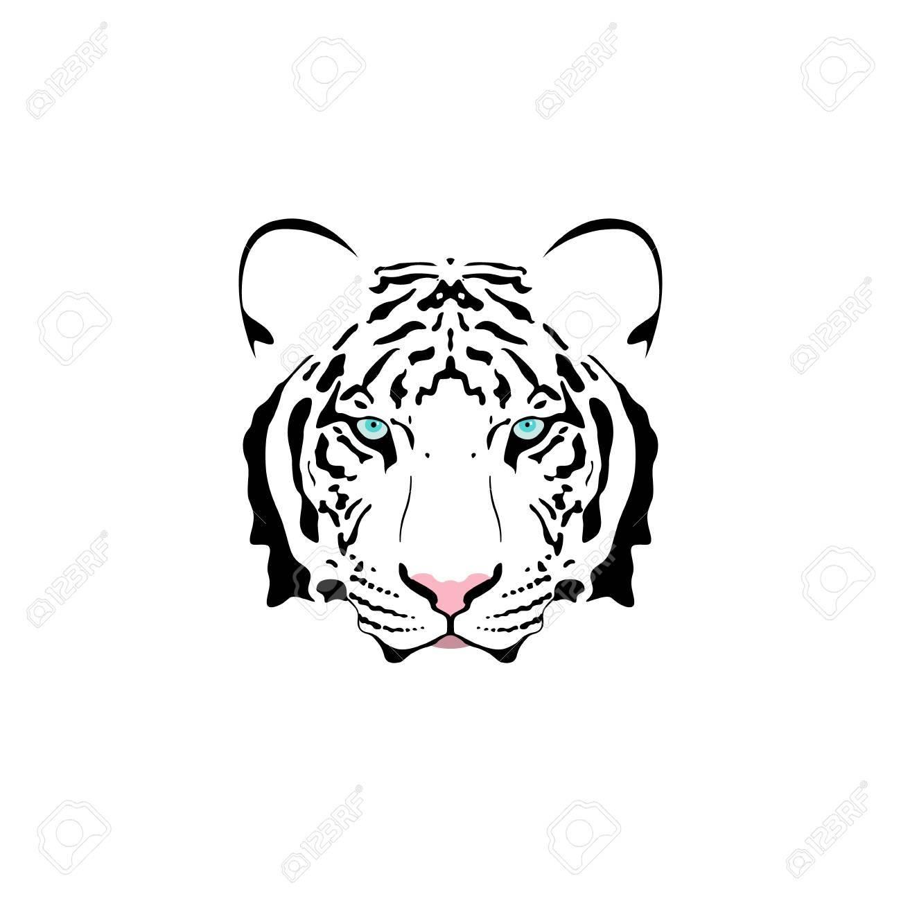 Illustration Vectorielle D Une Tete De Tigre Blanc Avec Des Yeux