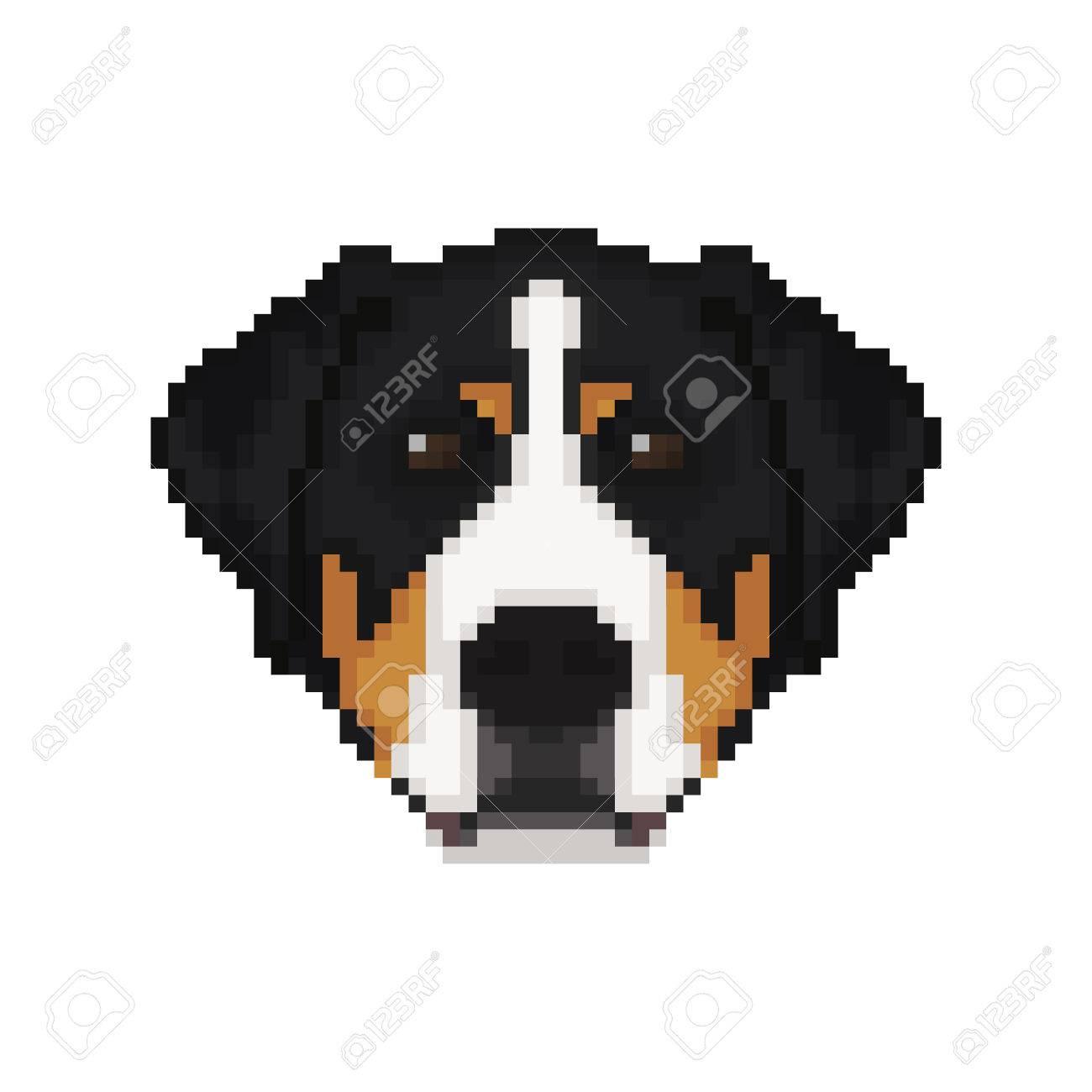 Swiss Mountain Dog Head In Pixel Art Style Dog Vector Illustration