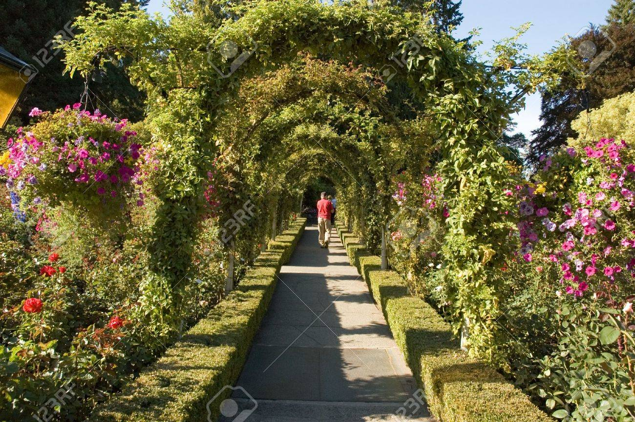 Rose Garden At The Butchart Gardens On Vancouver Island Near.. Stock ...