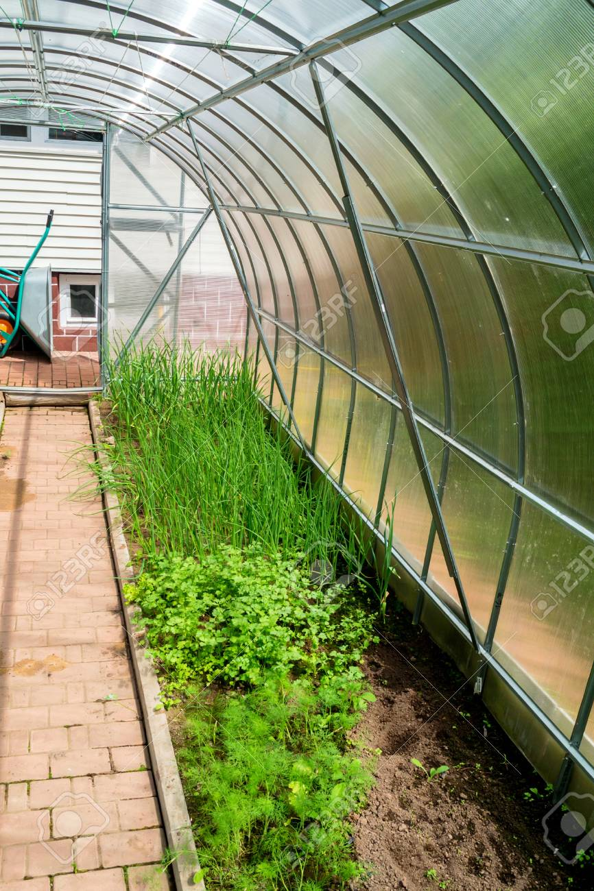 Tremendous Inside Small Garden Greenhouse Home Interior And Landscaping Ologienasavecom
