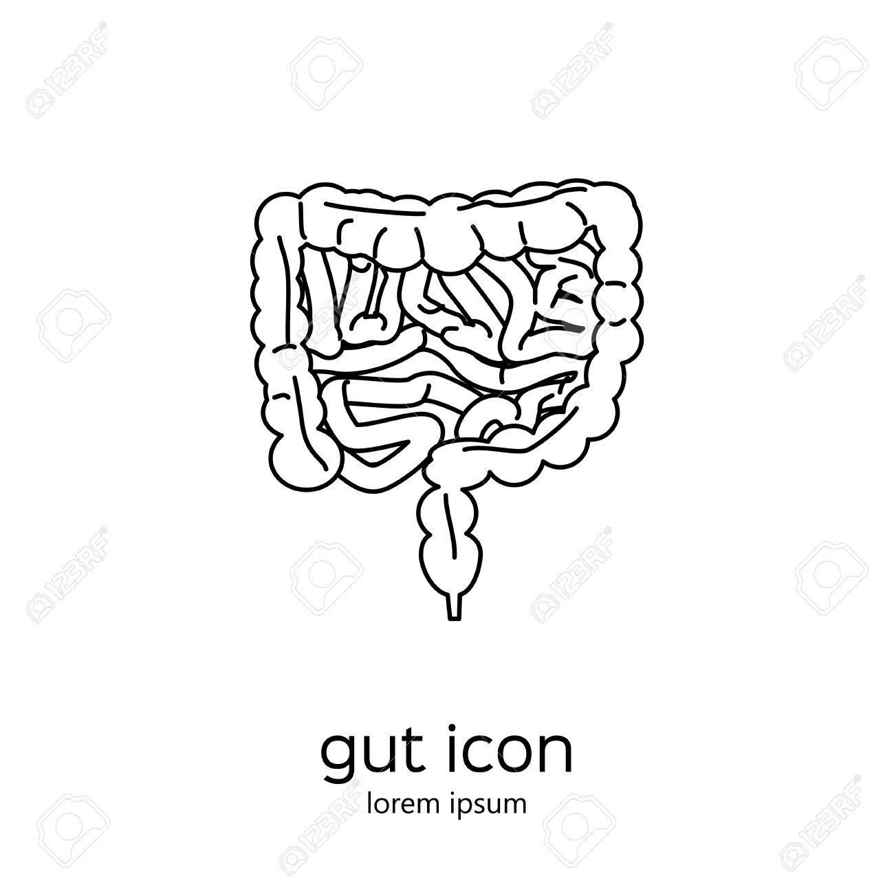 Gut sistema digestivo humano. Ilustración común del vector de los órganos internos icono en contorno negro sobre fondo blanco.
