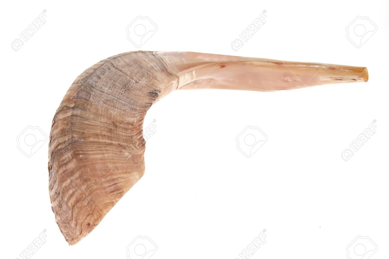 ram horn ( shofar ) isolated over white background Stock Photo - 9579554