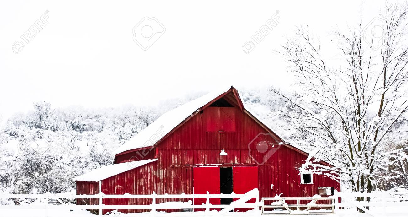 Big Red Barn in the Winter Snow - 74410218