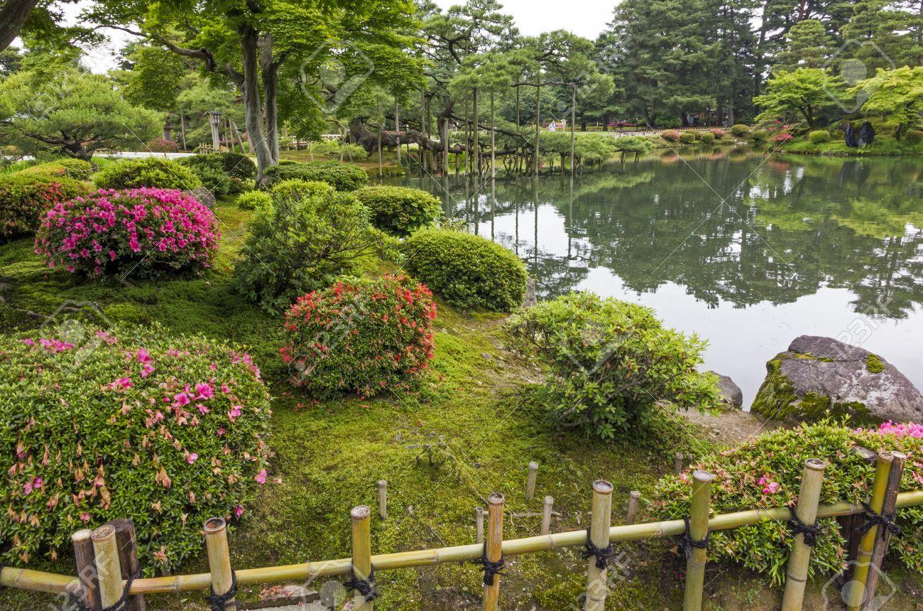 Arbusti Decorativi Da Giardino : Frammento di un giardino giapponese con bambù recinzione arbusti