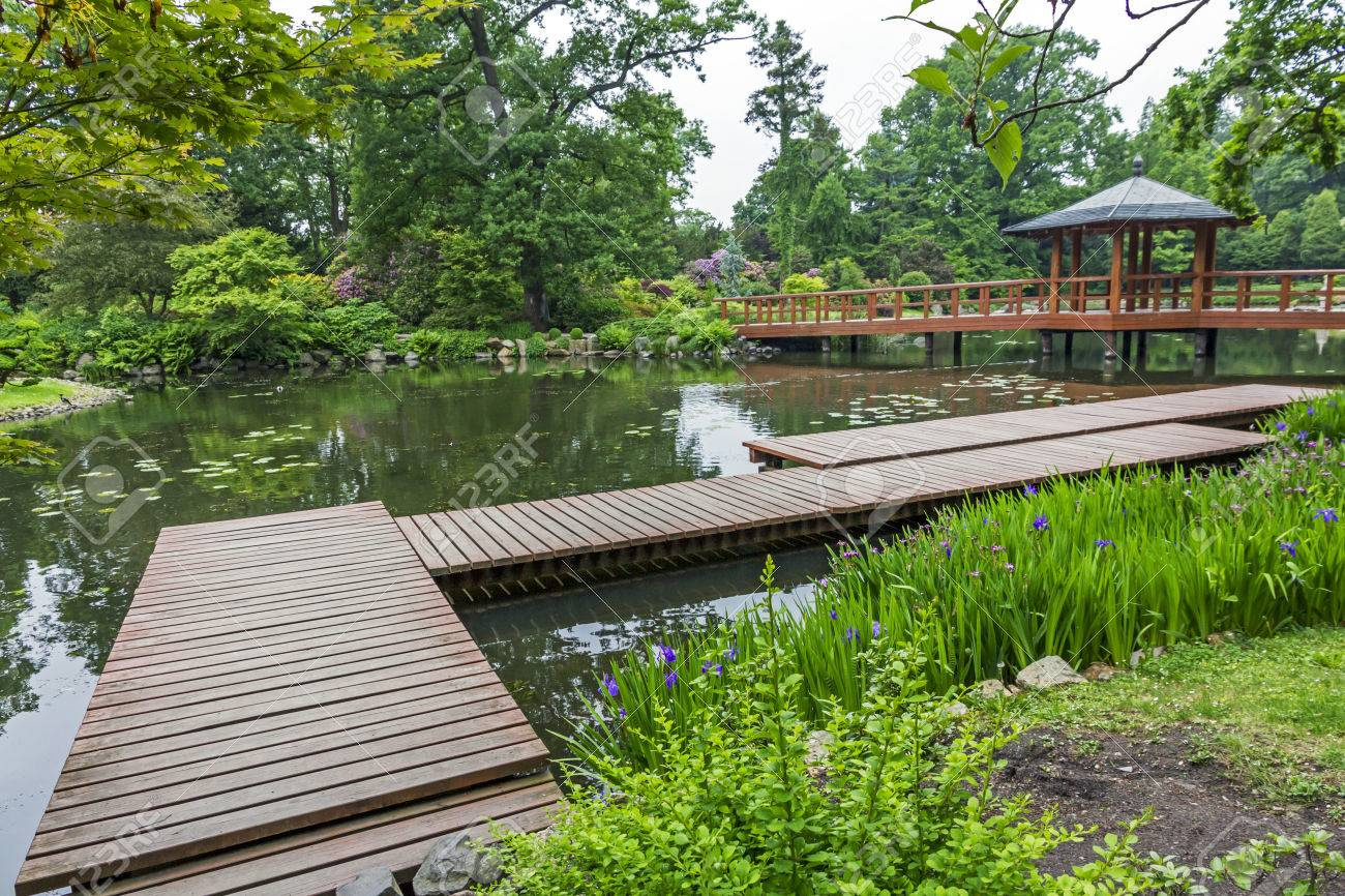 wide angle view of japanese garden pier red japanese bridge and beautiful water plants