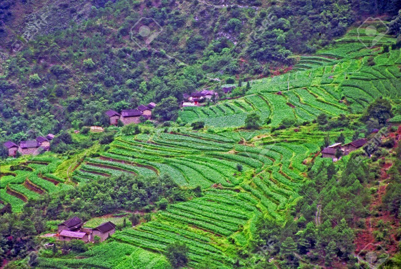Foto De Vista Aérea De Pueblo Tradicional En China Con Antiguas Casas De Campo Y Cultivos En Terrazas Garganta Del Salto Del Tigre Yunnan