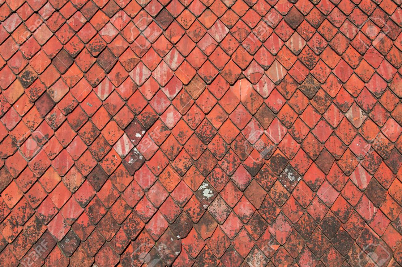 Piastrelle rosse sono in ceramica i sanitari bicolore da terra