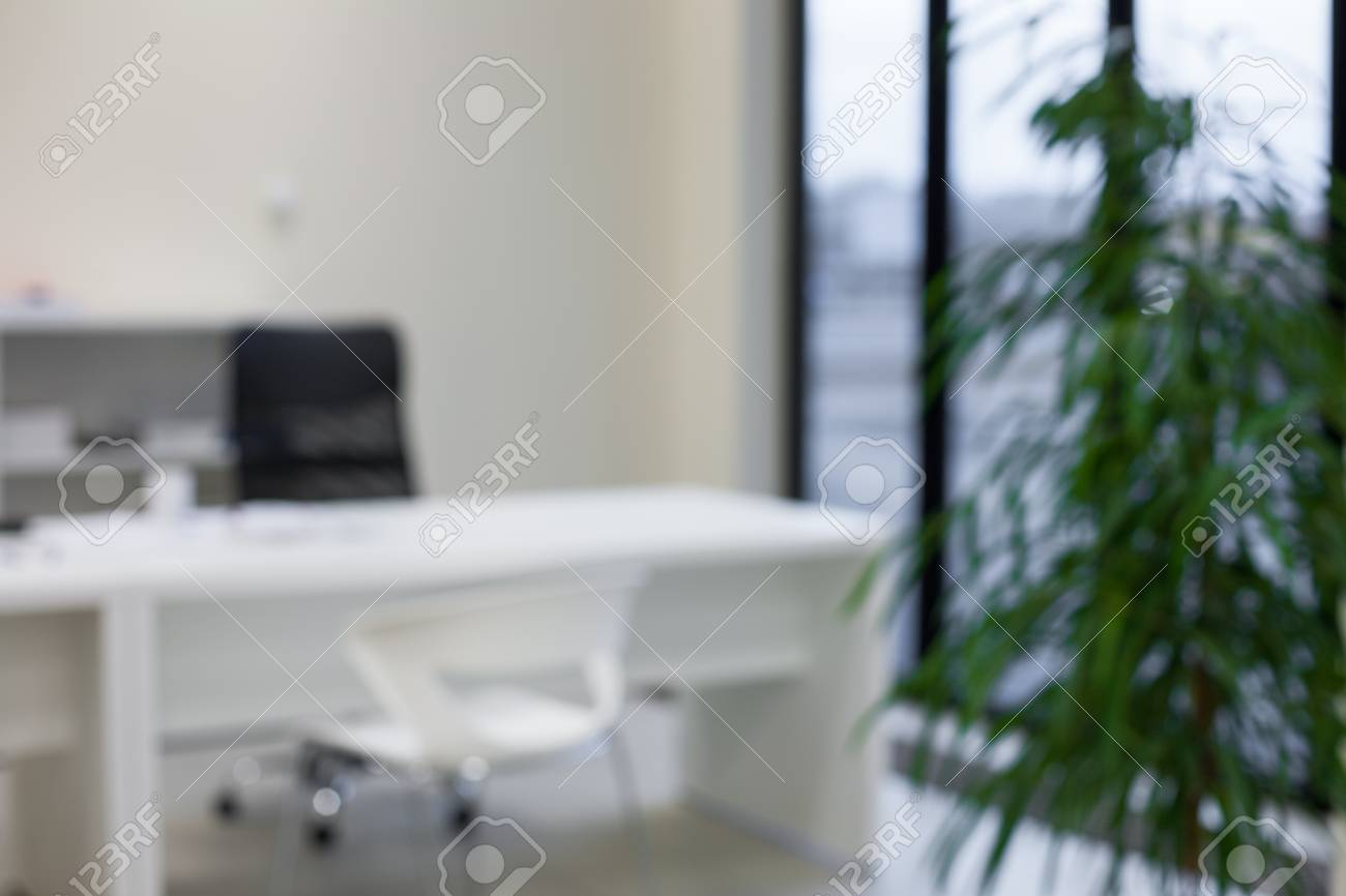 Abstract Blurred Bokeh Modern Office Space Background   White Work Desk And  Chairs, Green Plants