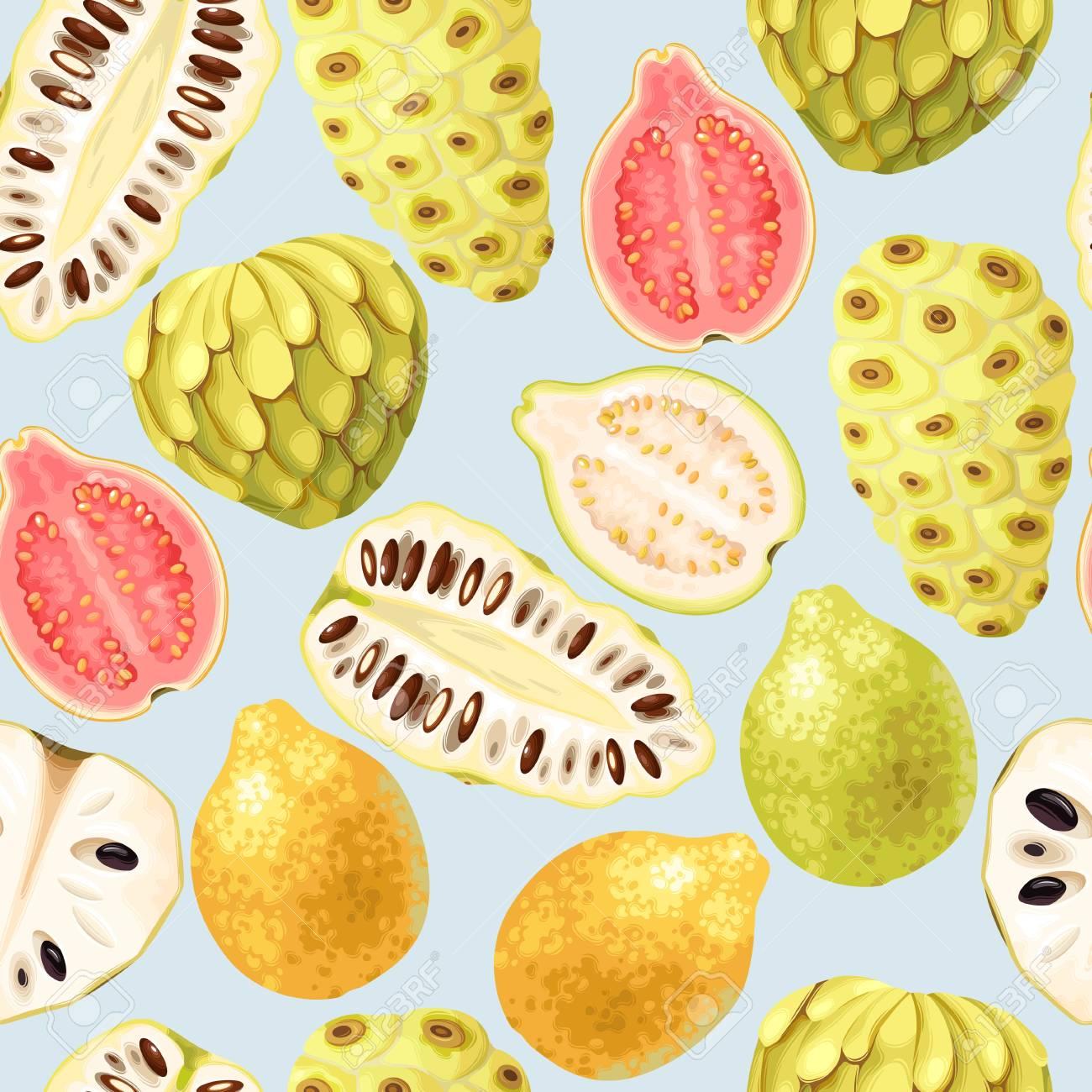 Cherimoya, noni and guava vector seamless background - 101043992
