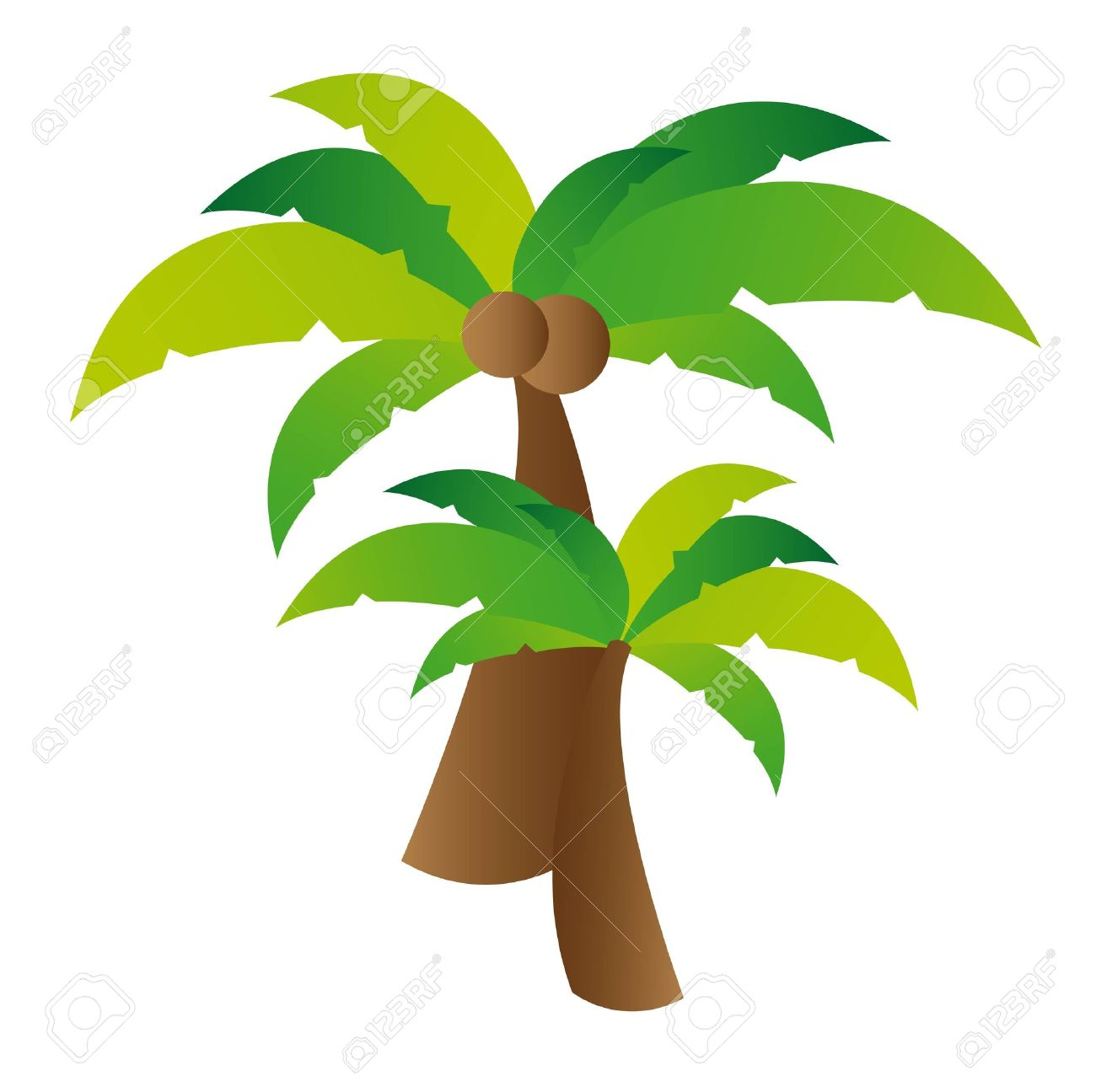 Coconut Palm Tree Illustration Over White Background. Vector ...
