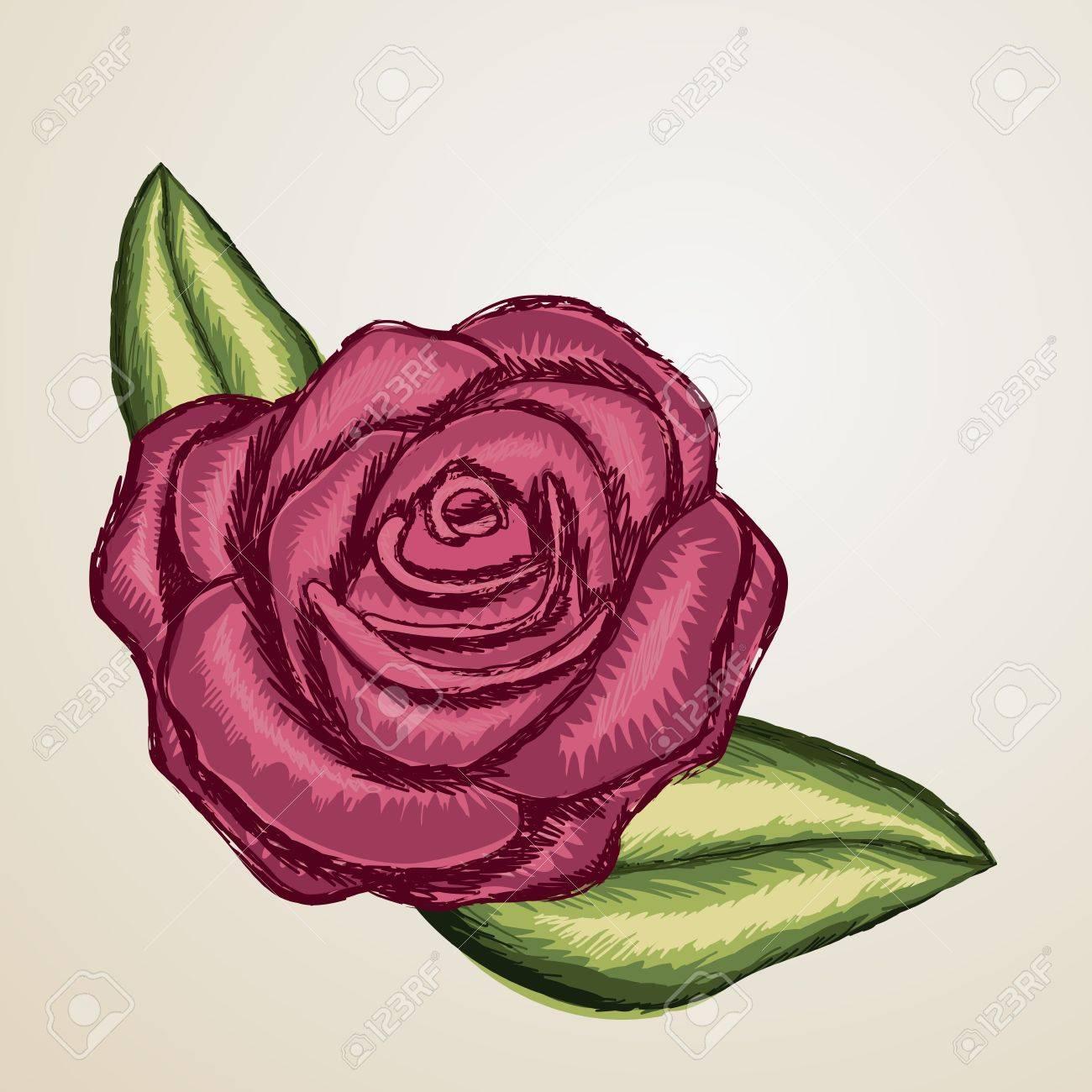 rose design over beige background illustration Stock Vector - 19918374