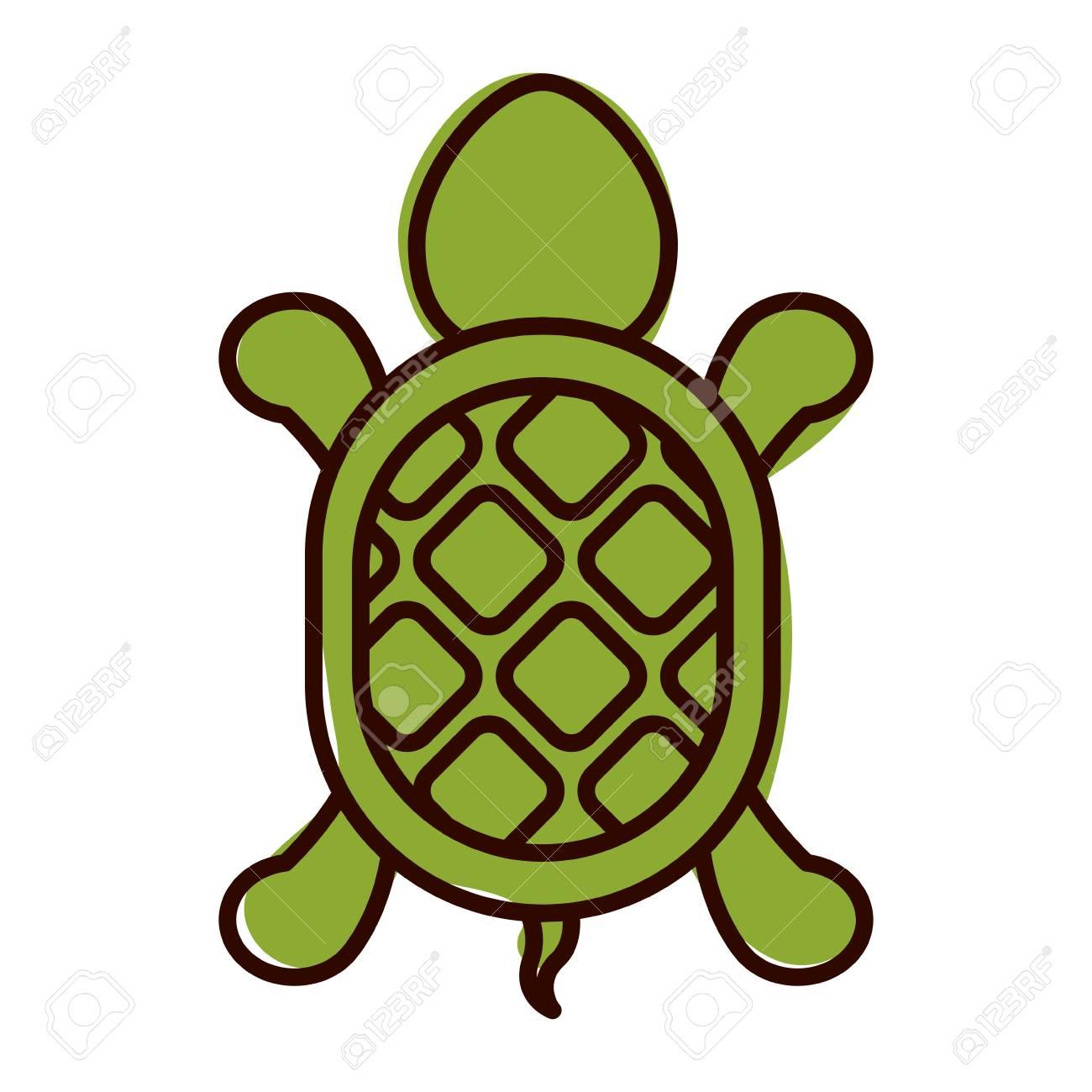 Silueta Con Forma De Tortuga Ilustración En Color De Animales ...