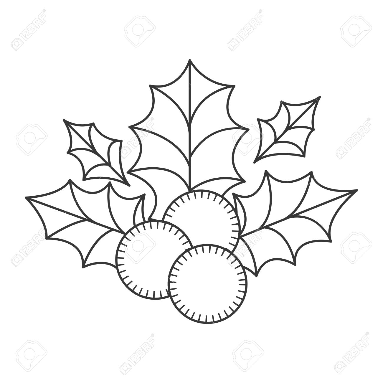 Holly Berry Christmas Decoration. Sketch And Draw Design. Vector ...
