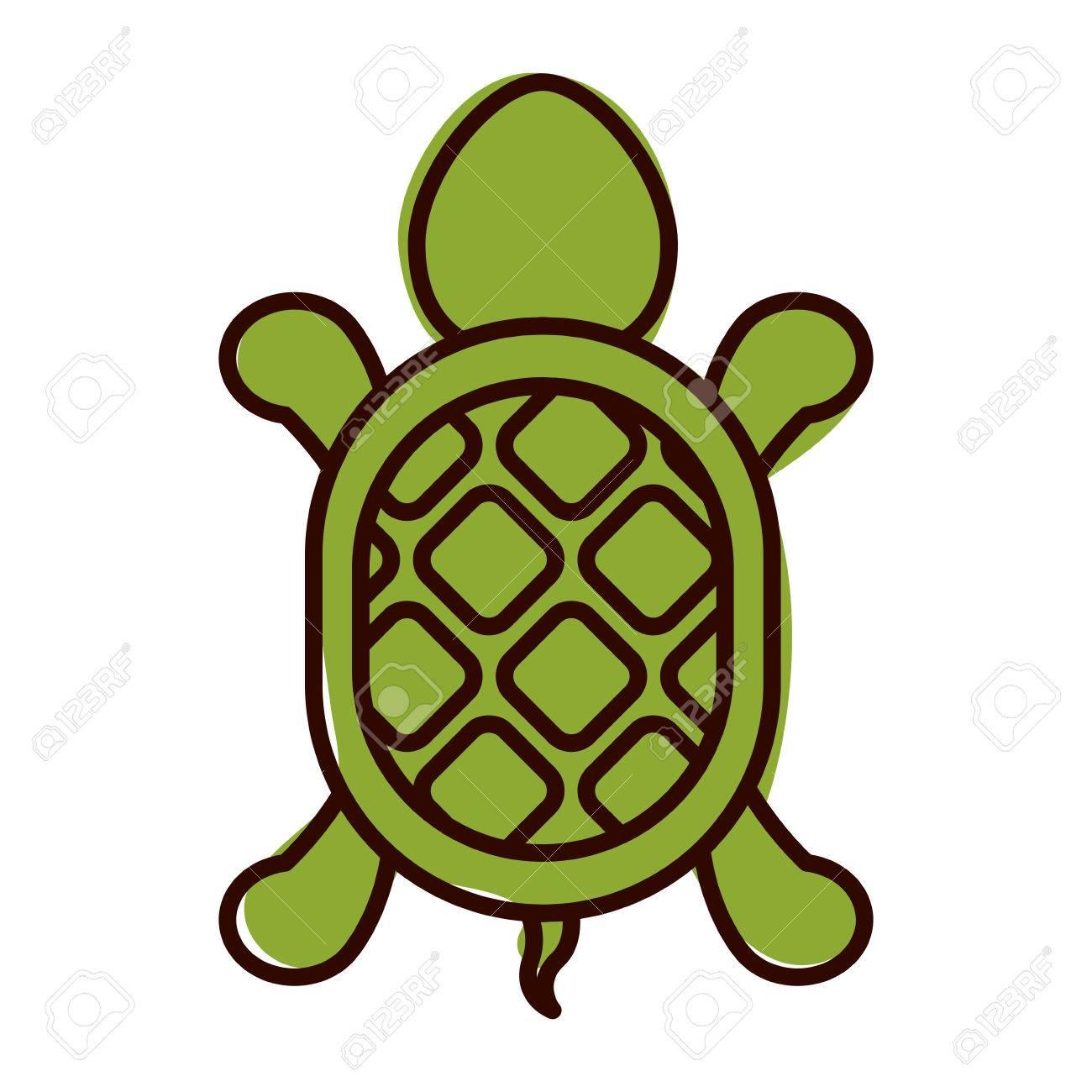 Charmant Schildkröte Bild Zu Färben Zeitgenössisch - Framing ...