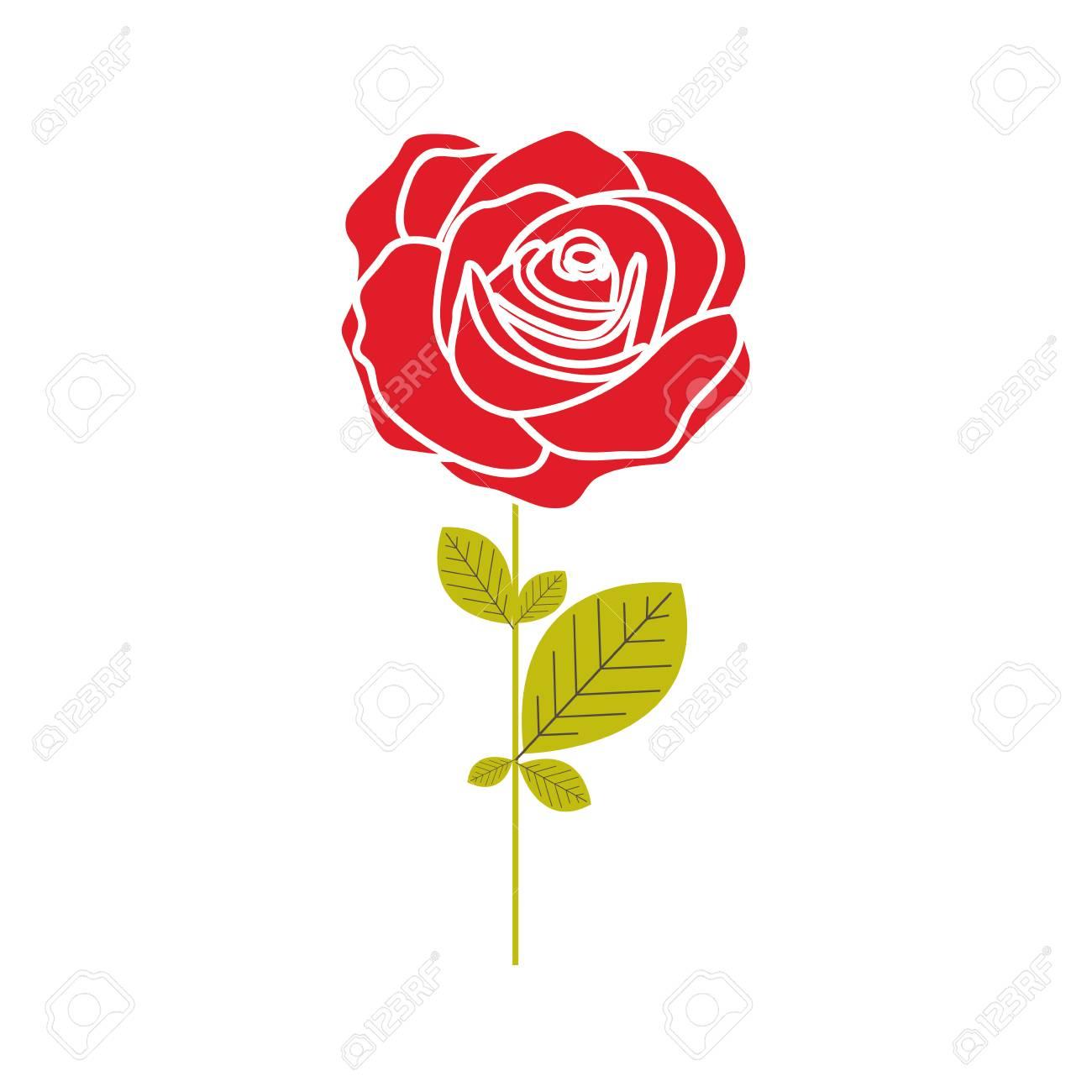 バラの花と白い枠ベクター イラスト花びらとカラフルなシルエットの