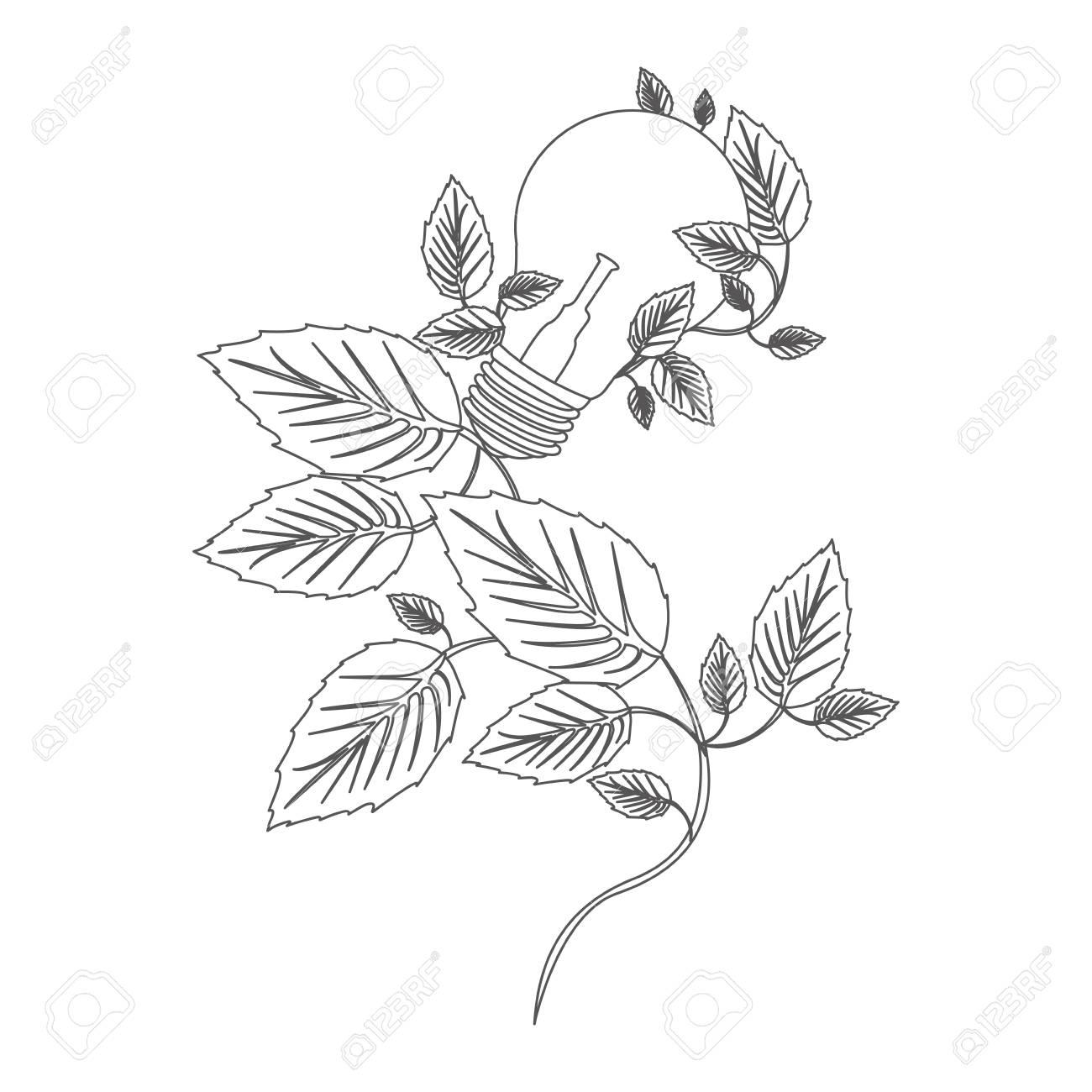 Contour De L échelle De Gris Créatif Avec Des Ampoules Et Illustration Vectorielle Plante Grimpante