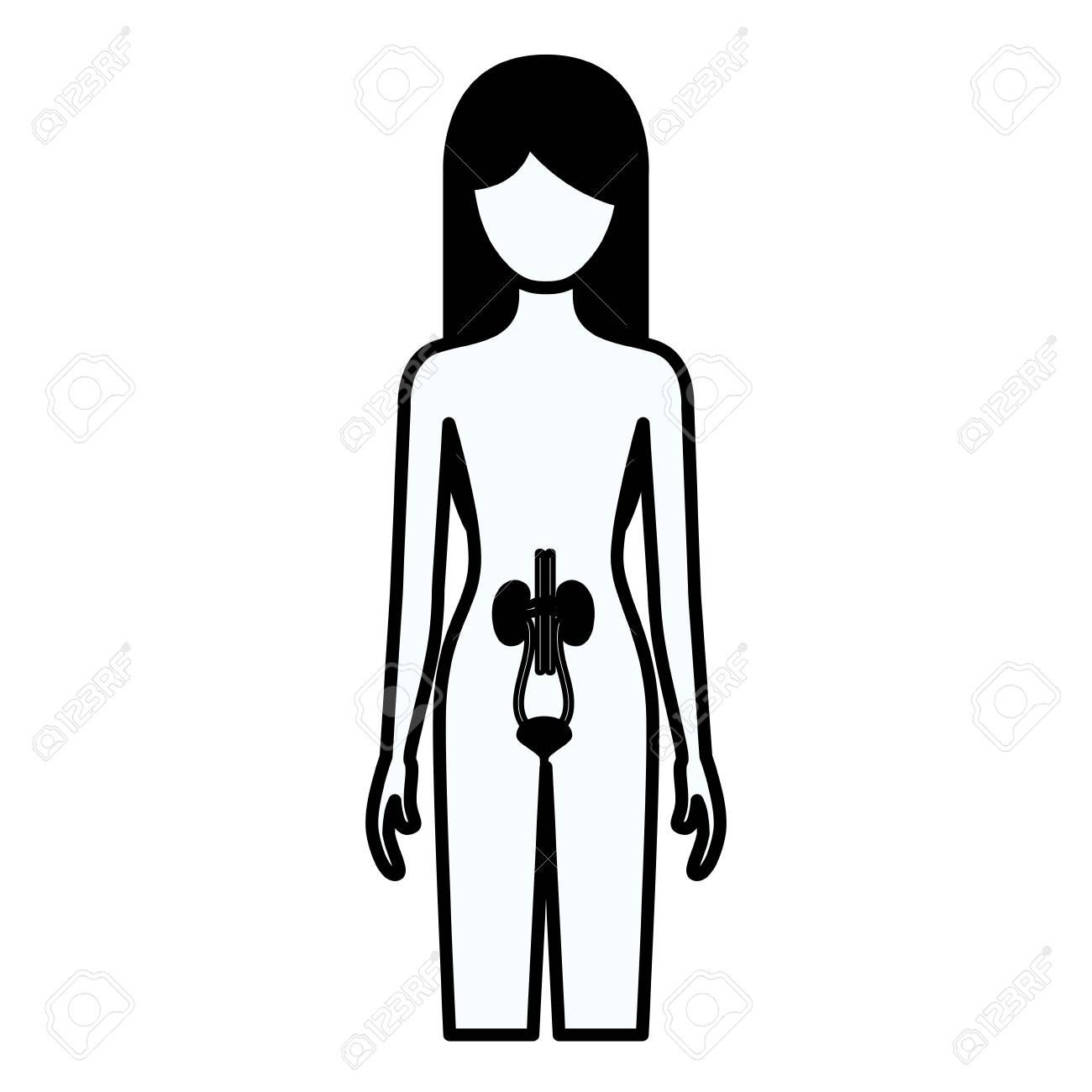 Contorno Negro Silueta Gruesa De La Persona Femenina Con La ...