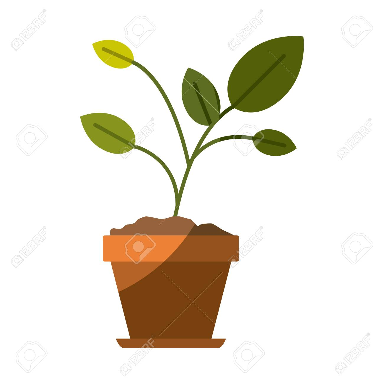 Silhouette Coloree De Plante En Pot De Fleur Avec Illustration