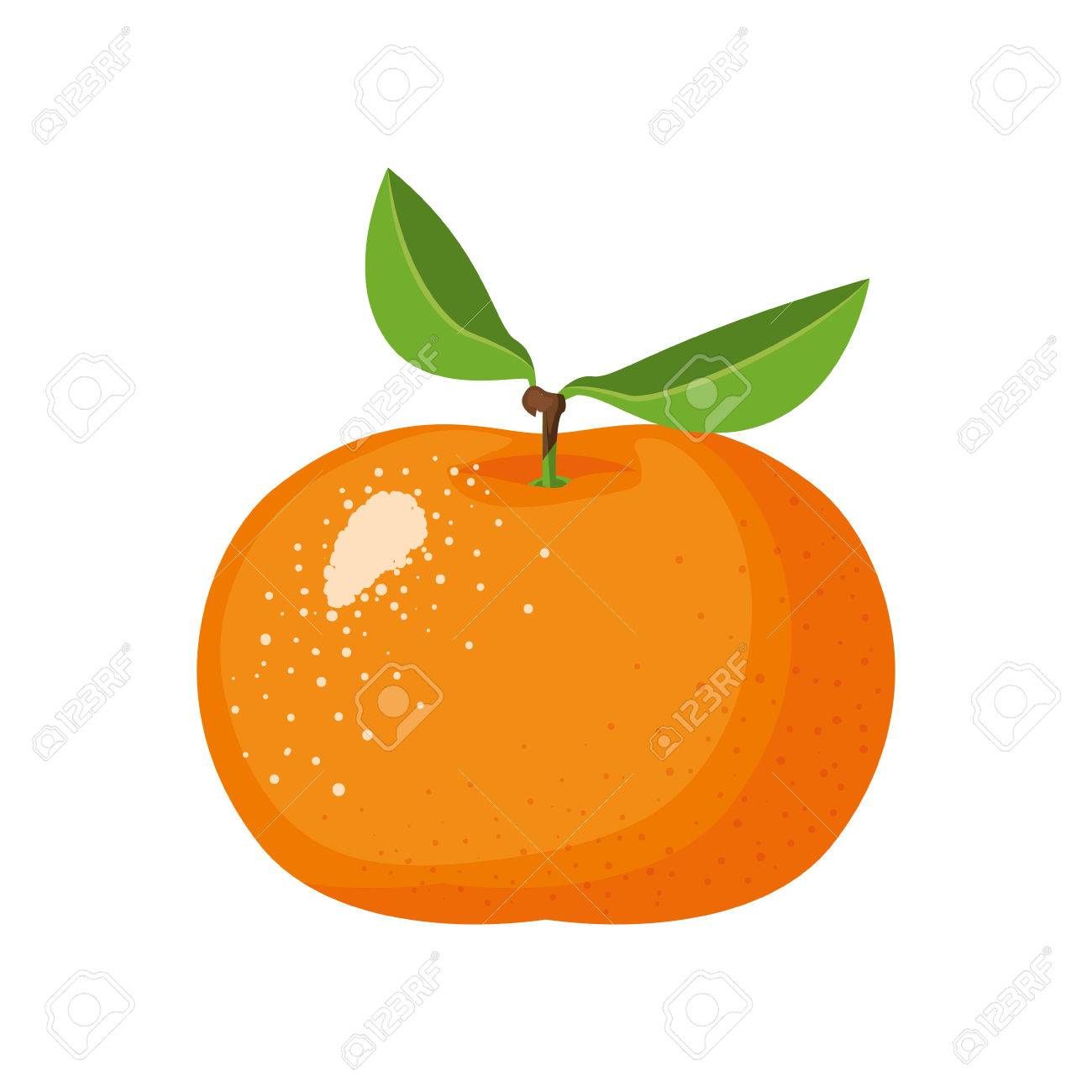 white background with realistic tangerine fruit vector illustration - 82402389
