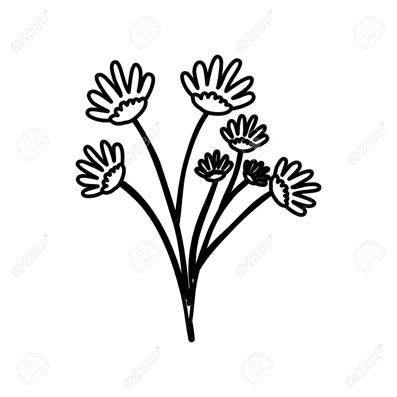 Sketch contour of hand drawing daisy flower bouquet with several sketch contour of hand drawing daisy flower bouquet with several ramifications vector illustration stock vector izmirmasajfo