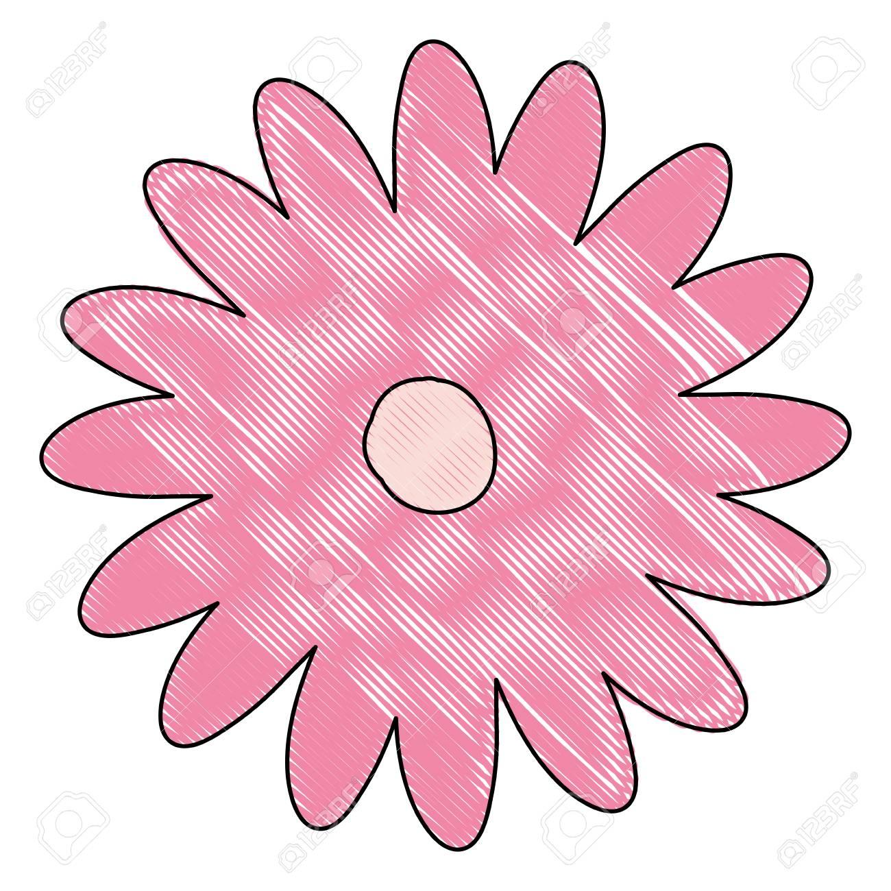 Silhouette De Crayon De Main Dessin Fleur De Marguerite Couleur Rose Avec Plusieurs Pétales Vector Illustration
