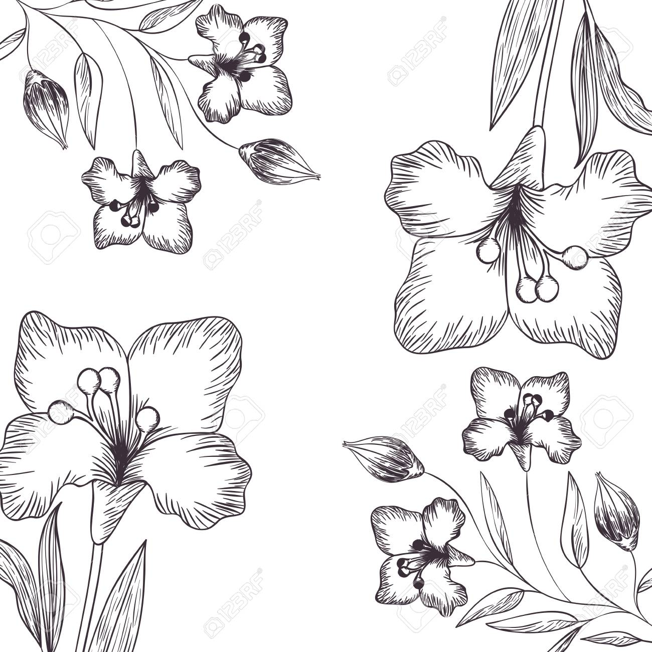 pattern flowers and leafs isolated icon vector illustration - 120440059