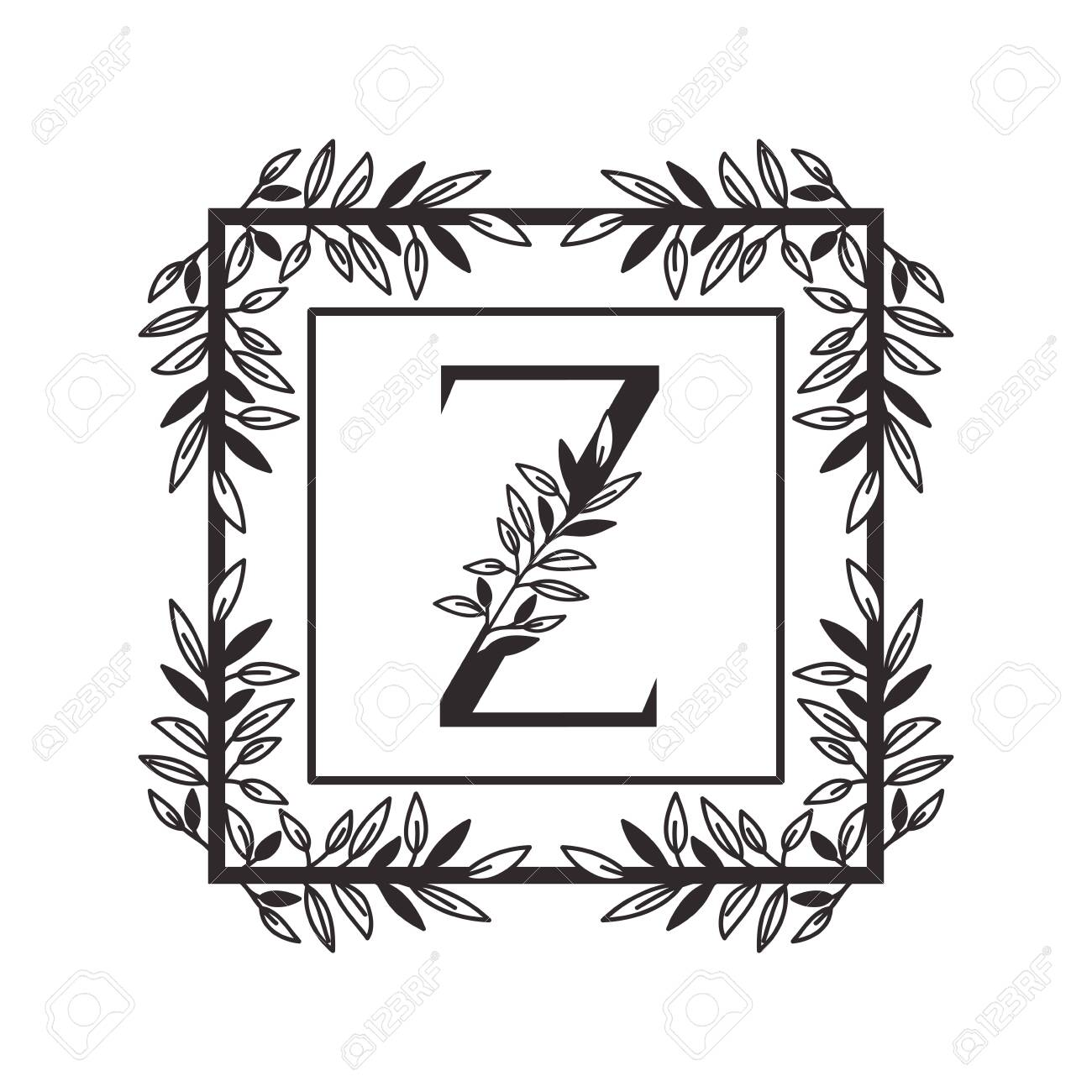 letter Z of the alphabet with vintage style frame vector illustration