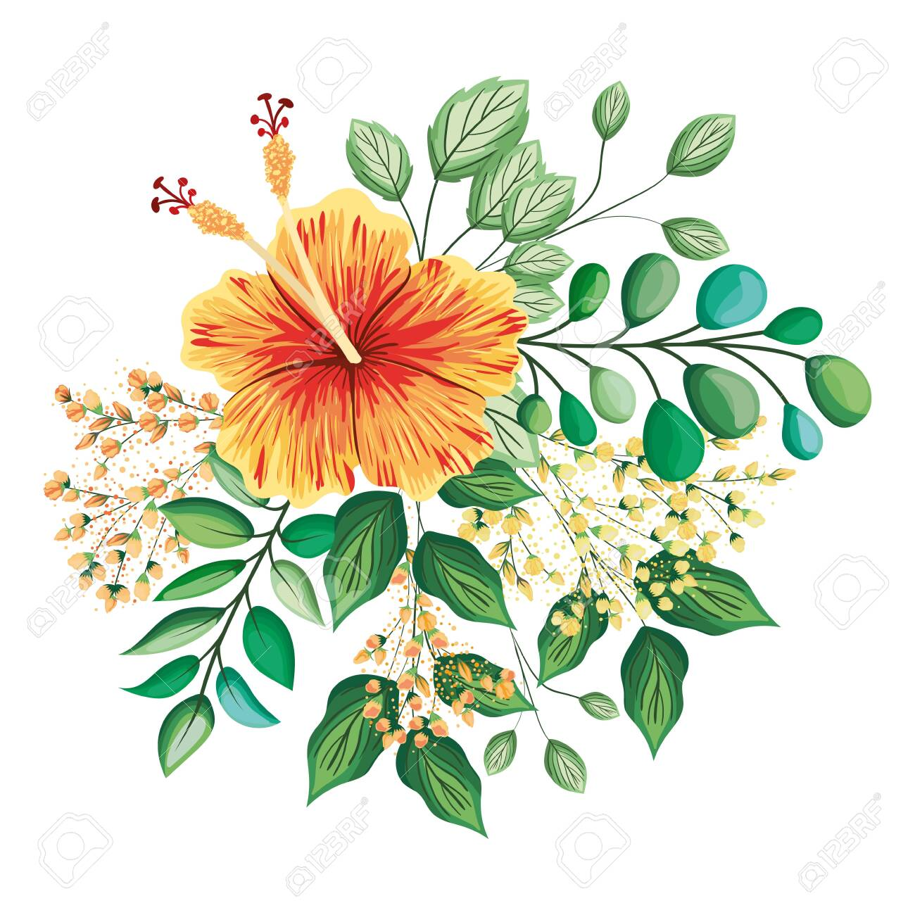orange hawaiian flower with buds and leaves painting design, natural floral nature plant ornament garden decoration and botany theme Vector illustration - 153820041