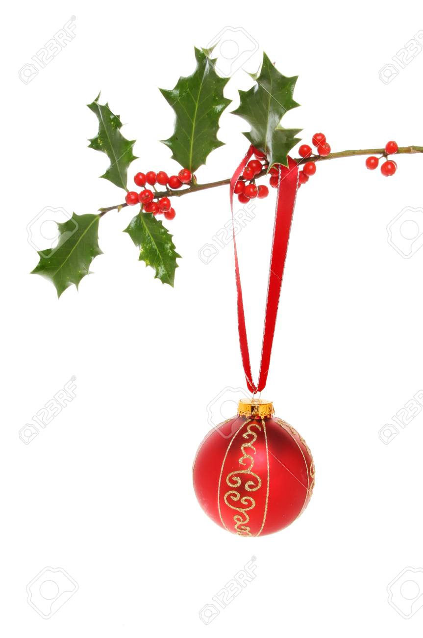 babca7823c81 Red and gold glitter Christmas bauble hanging from a holly branch isolated  against white Stock Photo