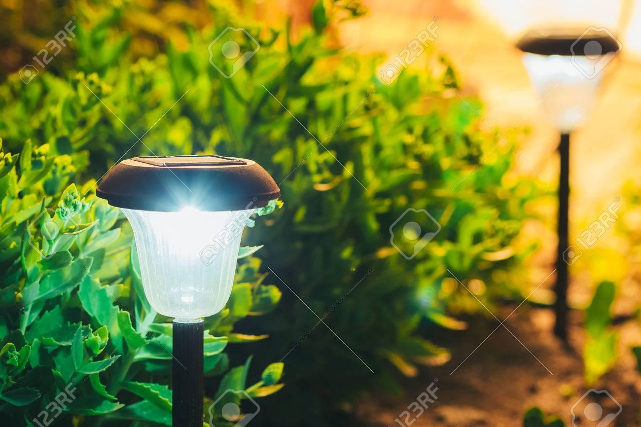 Decorative Small Solar Garden Light, Lanterns In Flower Bed In ...